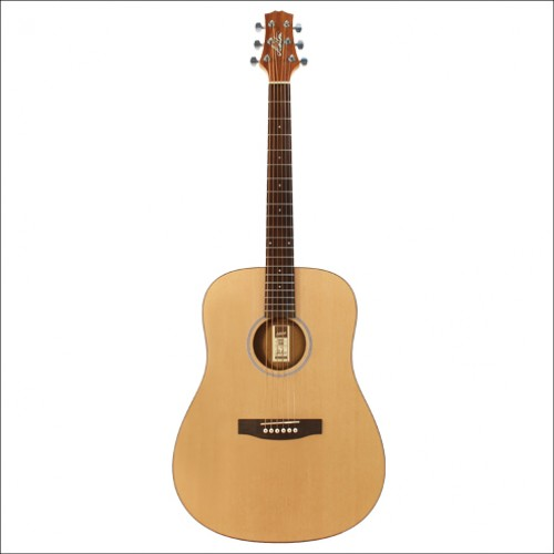 Ashton Dreadnought-NTM D20