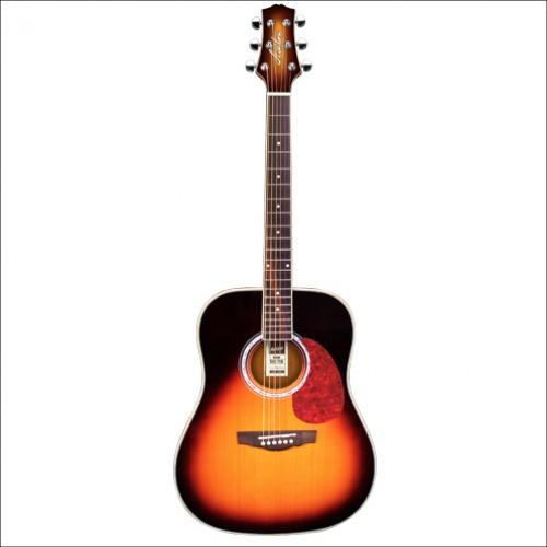 Ashton Dreadnought Acoustics D24
